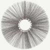 Диск щёточный (металл диск) 120х550